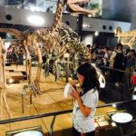 2年ぶりの恐竜博物館